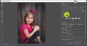 reset liquify tool photoshop basics of liquify tool in photoshop tutorial full explanation