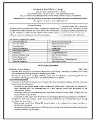 executive resumes executive resumes and coaching for executives