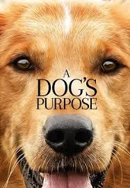 a dog u0027s purpose official trailer hd youtube