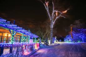 Washington Dc Zoo Lights by Zoolights Cancellation For December 8 To Resume December 9