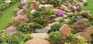 rockery ideas inspirational landscaping designs or how to