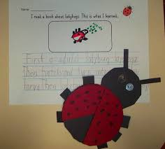78 best ladybugs in the classroom images on pinterest classroom