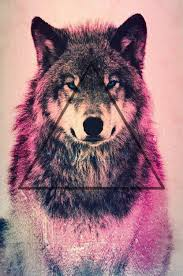 don t fear the wolf sneaks in the back is wolves