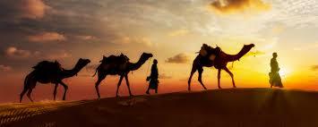 desert safaris city tours and attractions arabian adventures