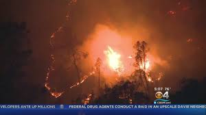 California Wildfire Cat by At Least 31 Dead In California Wildfires Cbs Miami
