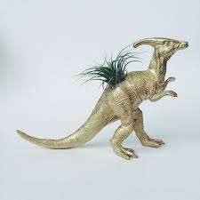 Animal Planter by Large Gold Parasaurolophus Dinosaur Planter Air Plant U2013 Two