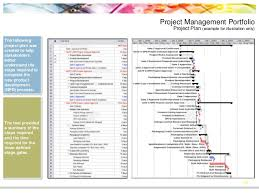 process improvement and project management portfolio