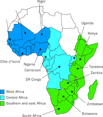 East Africa Map Quiz by The Spread And Effect Of Hiv 1 Infection In Sub Saharan Africa