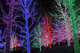 led christmas tree lights oklahoma best template collection