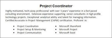 Resume Objective Or Summary Summary Of Resume Resume Badak