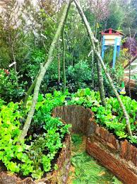 edible landscaping permaculture kitchen garden jardin potager
