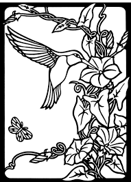 attractive design hummingbird coloring pages images