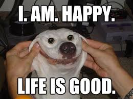 Happy Life Meme - i am happy life is good misc quickmeme