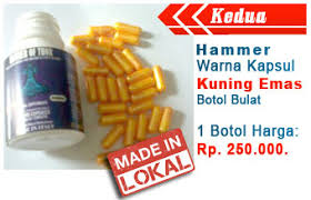 jual waspada obat hammer of thor bohong klg herbal www