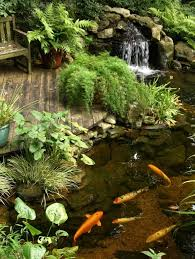 Backyard Waterfall Ideas by 162 Best Water Features Images On Pinterest Backyard Ponds