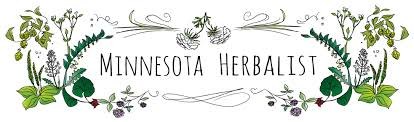 minnesota native plants list medicinal herbs for the northern gardener
