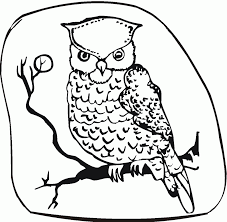 printable owl coloring pages for kids picture of a snowy to color