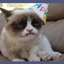 Grumpy Cat Meme Happy - create meme miss you grumpy cat meme grumpy cat happy birthday