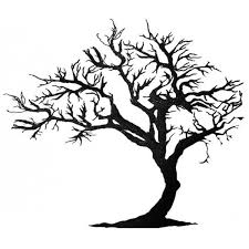 45 best trees images on silhouettes tree drawings and