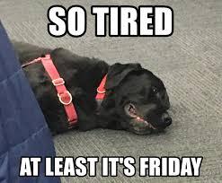 So Tired Meme - so tired at least it s friday bambamdog meme generator