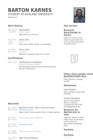 Busboy Resume Examples by Dishwasher Resume Samples Visualcv Resume Samples Database