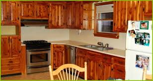 how much does it cost to refinish kitchen cabinets refinishing oak kitchen cabinets kitchen cabinet refinishing lovely