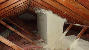 skylight shaft insulation structure tech home inspections