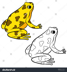 cartoon poisondart frog coloring page vector stock vector