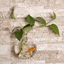 popular wall vase glass buy cheap wall vase glass lots from china transparent sunflower shaped wall hanging vase hydroponic container plant flower glass bottle home decor drop shipping