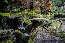 rakusho japanese garden joao maia