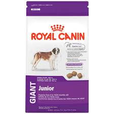 belgian malinois size at 6 months amazon com royal canin health nutrition giant junior dry dog food