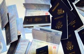best 25 driver license online ideas that you will like on
