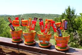 candy bar bouquet s day candy bar bouquet house of fauci s