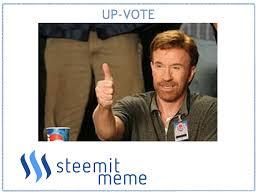 Stallone Meme - meme chuck norris sylvester stallone steemit