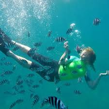 Nevada Snorkeling images Best all you can eat buffet in nevada winners 2018 10best readers jpg