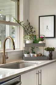 Professional Kitchen Faucet by Sinks And Faucets Delta Brushed Nickel Kitchen Faucet Kitchen