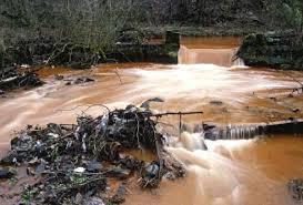 ساهموا في تنظيف مياهنا!!!!!!!!!!!!!!!!!!!!!!!!! images?q=tbn:ANd9GcR