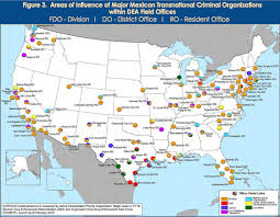 gulf cartel where do mexican drug cartels operate in the us business insider