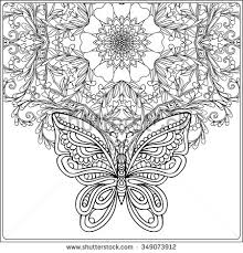 butterfly floral mandala coloring book older