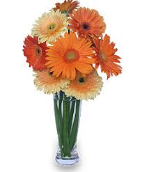 flowers to go citrus cooler flowers to go flowers to go