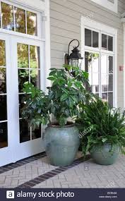 several outdoor plants in large vases sitting on a covered porch