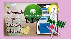 Rug Doctor Fluid Dollar Tree Diy