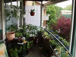 garten balkon der balkon katekit s garten
