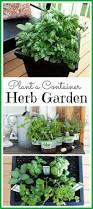76 best gardening images on pinterest