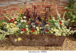 flower trough stock photos u0026 flower trough stock images alamy