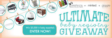 baby registery ultimate baby registry giveaway weespring