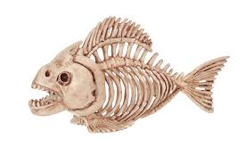 amazon com crazy bonez skeleton fish toys u0026 games