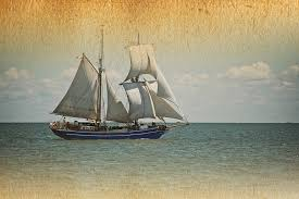 Wildfire Credit Union Locations by Tall Ship Celebration