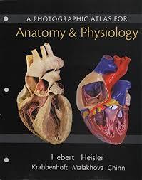 Human Anatomy And Physiology Books Human Anatomy U0026 Physiology Books A La Carte Edition Modified