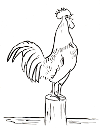 free coloring pages of birds free coloring pages and reference pictures samantha bell